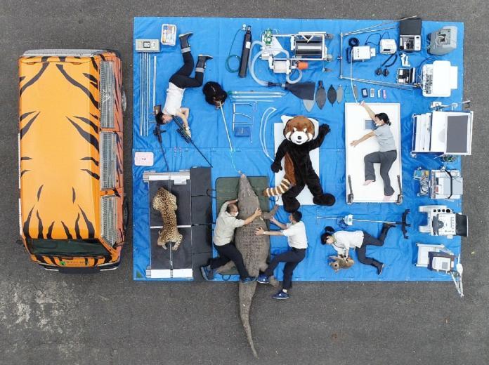 ▲台北市立動物園動物醫院行動診療所小虎車,方便獸醫外出看診。(圖/台北市立動物園提供)