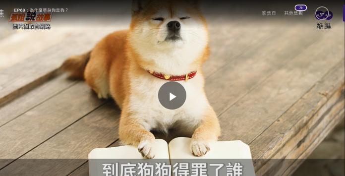 <b>單身狗</b>為什麼是「狗」? 原因竟是來自外來語