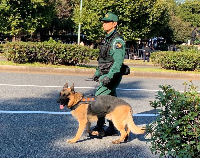 <br> ▲日本警方也出動警犬。(圖/翻攝自 twitter @oedharris )