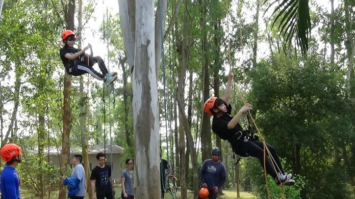 爬一尺高一吋 大學生攀樹成年體驗