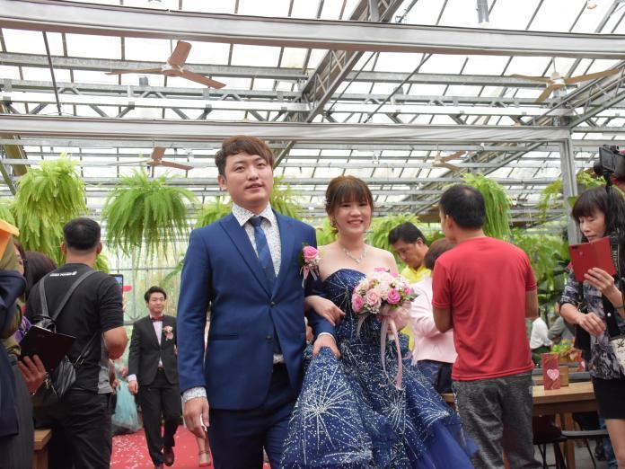 <br> ▲彰化縣政府舉辦聯合婚禮,新人步上紅地毯。(圖/記者陳雅芳攝,2019.11.23)