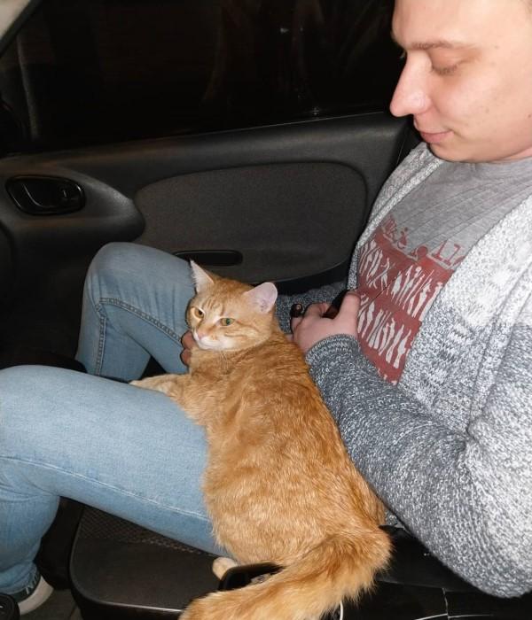 <br> 當札古亞想要領養貓咪時,一隻小橘貓主動出現在他的面前,於是牠就順理成章地成為小小車掌(圖/IG@cat_taxi)