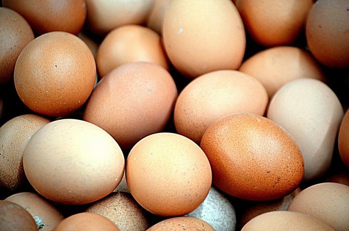<br> ▲蛋。(示意圖/翻攝自 pixabay )