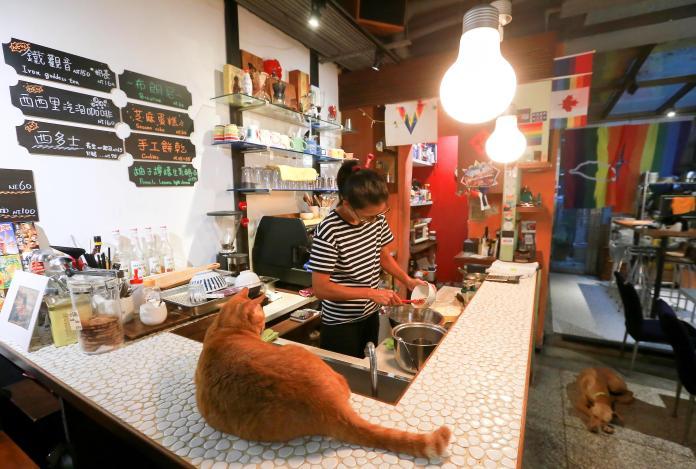 同志咖啡店熄燈/熟客迷惘找尋認同感 這是咖啡店也是家