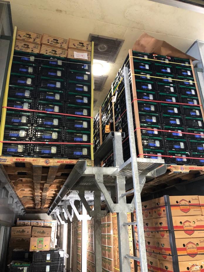 <br> ▲全台香蕉外銷量2,866公噸,其中外銷日本達2,801公噸,屏東為重要生產基地,約佔7成外銷量。(圖/屏東縣政府提供)