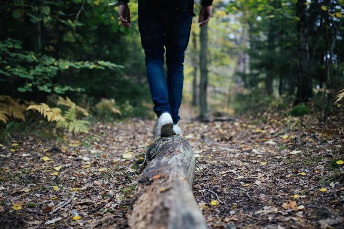 ▲一名網友在 PTT 女孩版提到,穿連鎖服飾品牌 UNIQLO 的牛仔褲,是否會顯得很宅?貼文立刻引發熱議,許多網友卻點破一「悲慘關鍵」。(示意圖/翻攝自 Pixabay )