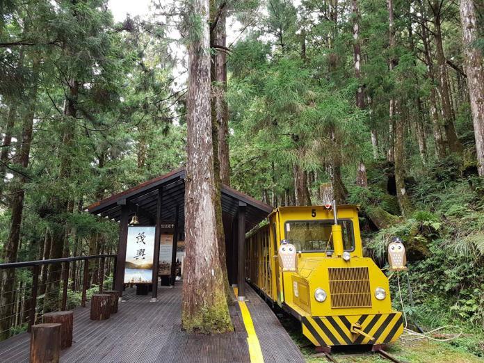 太平山森林遊樂區的蹦蹦車