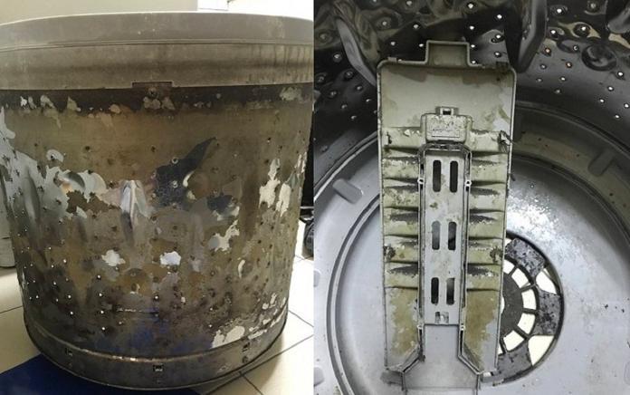 ▲清洗小家電零件時,記得完全乾燥才能裝回,並應定期消毒。(淨芙達提供) 。(圖/信義居家提供)