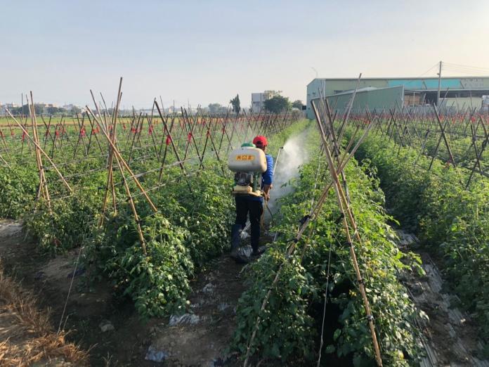 鼓勵農業生產措施 嘉義市遭排除在外