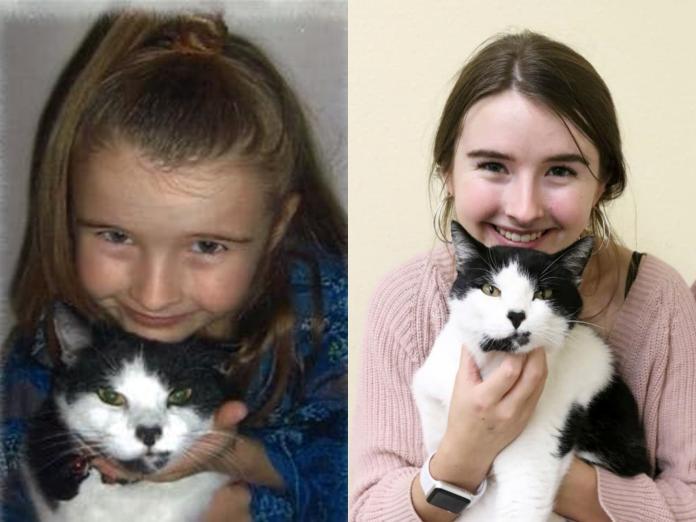 愛貓走失多年 女孩到收容所當志工才兩天竟奇蹟發生!