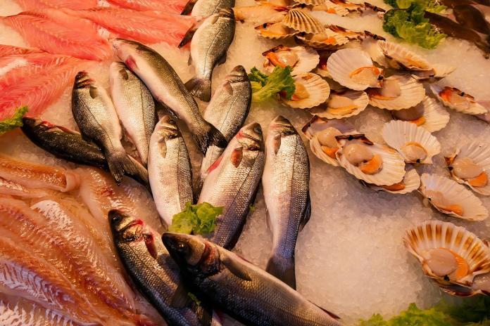 什麼樣的<b>魚</b>最受大眾喜愛? 老饕答案一面倒:生吃都可以