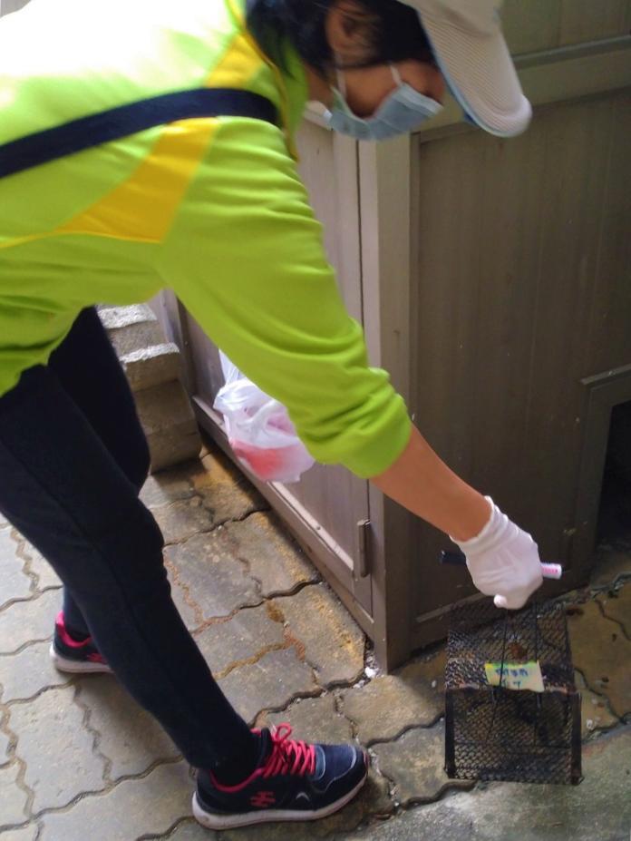 ▲高市三民區出現首例「漢他病毒出血熱」確定病例。(圖/高市衛生局提供)