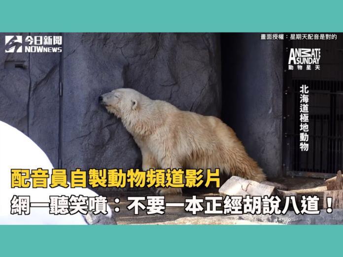 影/配音員自製動物影片 網一聽笑噴:不要一本正經胡說八道!
