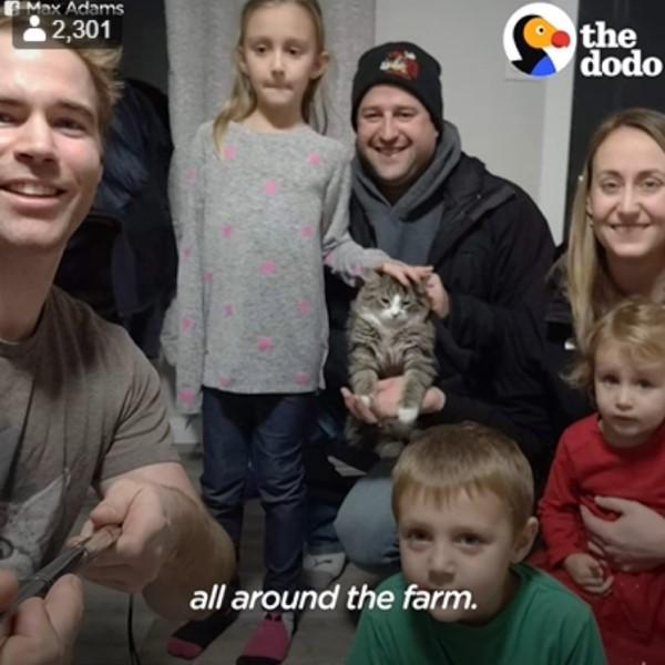 <br> 雖然找到小貓的原失主,不過因為他們又領養了另外一隻貓咪,所以馬克思決定要領養小貓(圖/翻攝自FB@The Dodo)