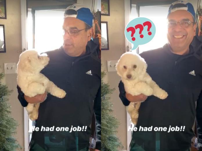 愛犬去<b>寵物美容</b>要丈夫接回 門一開妻子傻眼:這誰家的狗