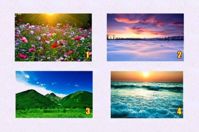 ▲四種風景中最愛哪個?選擇將揭開你的潛藏才能。(圖/翻攝 dimajadid )