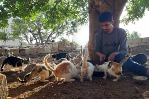 <br> 薩拉赫表示只要有貓咪陪伴,砲火與痛苦就變得沒那麼可怕!(圖/BBC News)