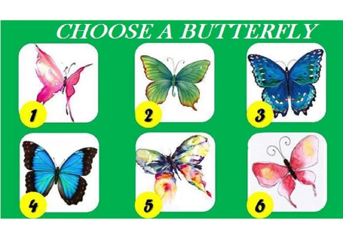 ▲選一隻你最喜歡的蝴蝶?測出你的「潛在性格」。(圖/翻攝自Evolve Me )