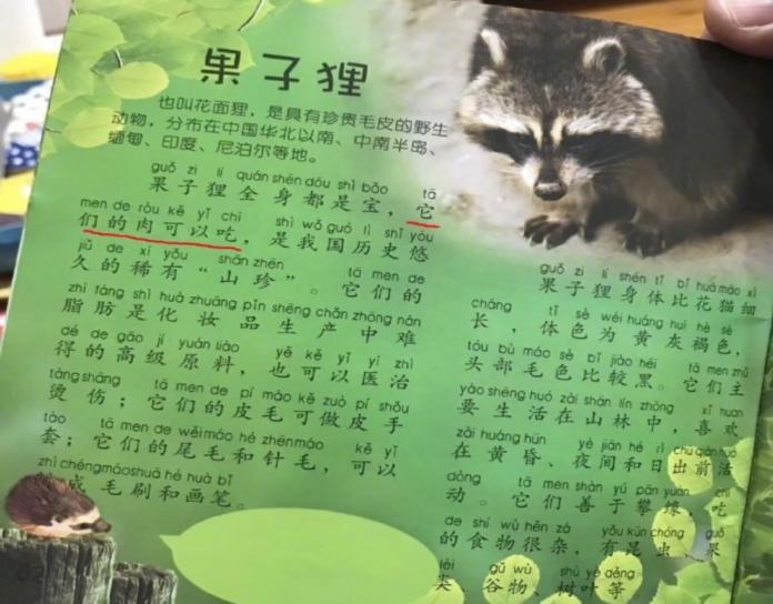 ▲由武漢大學出版社出品的《動物小百科》,裡頭教導果子狸的各種用途,包含食用。引發爭議。(圖/翻攝自微博)