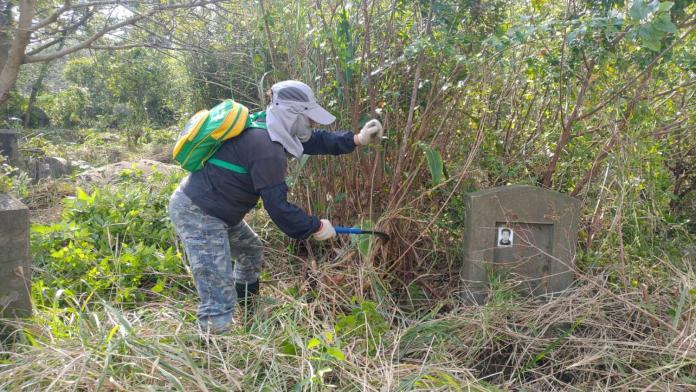 <br> ▲竹市殯葬管理所近日將陸續完成各公墓除草作業。(圖由新竹市政府提供)