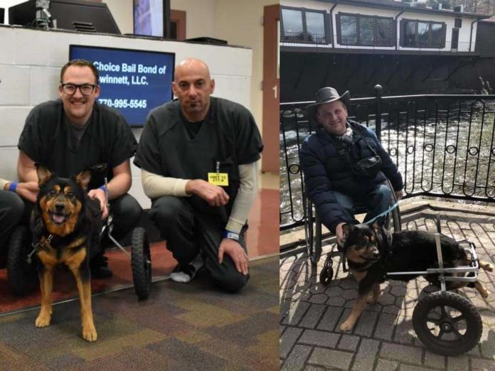 可憐狗狗遭領養又退養連4次 終於找到最棒的家!