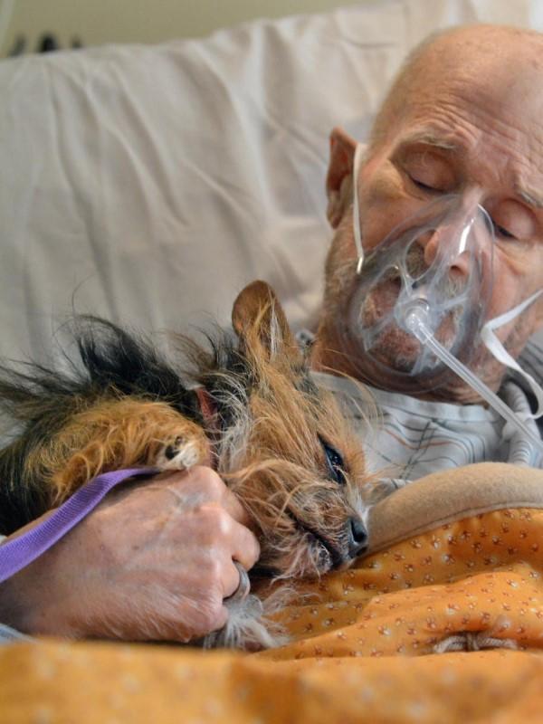 <br> 不管在哪裡,一人一狗的心總是緊緊地繫在一起(圖/AlbuquerqueJournal.com)