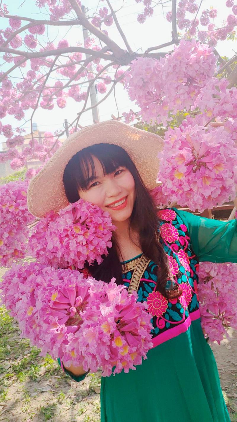 <br> ▲這棵紅花風鈴木高約5公尺,直徑約7公尺,,三角造型的粉紅色樹冠知名Logo更吸睛。(圖/記者陳雅芳攝,2020.02.28)