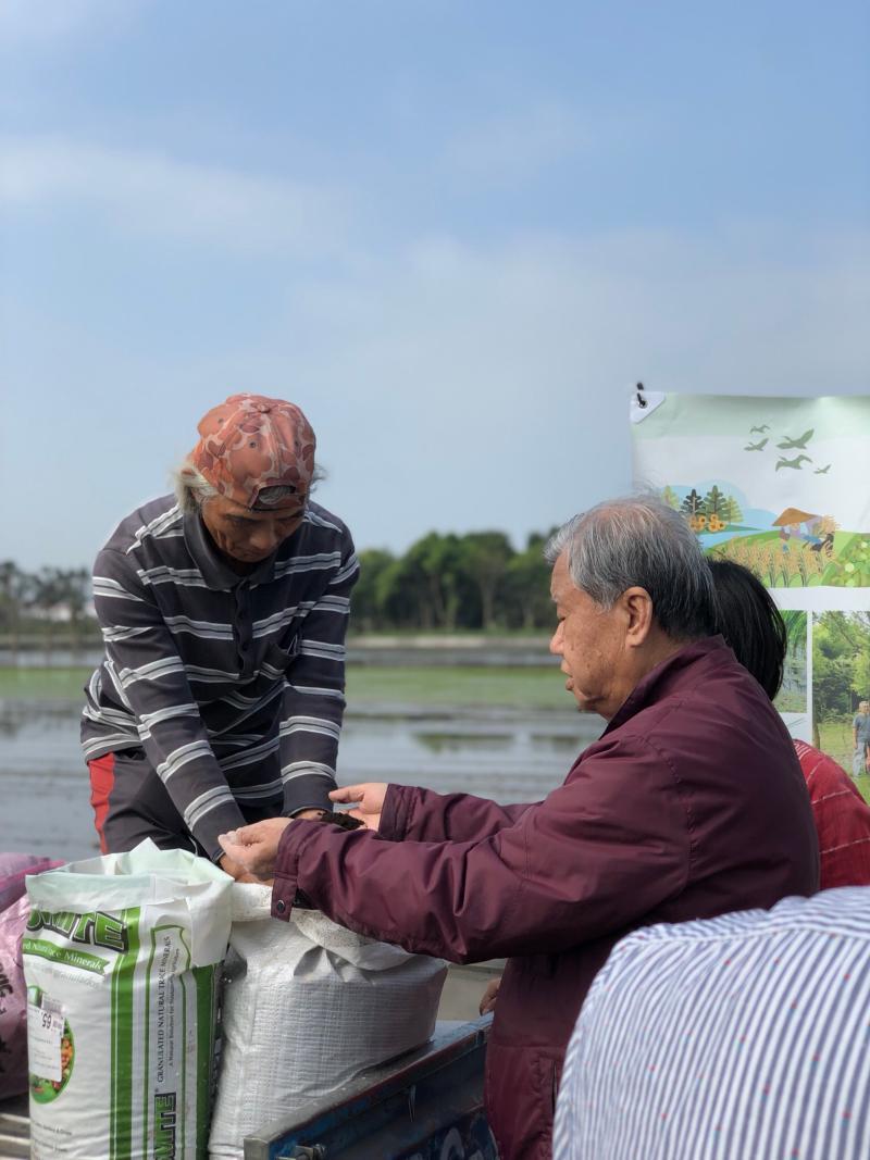 <br> ▲溪州尚水農產公司將蚯蚓糞肥和火山灰混合當做肥料。(圖/記者陳雅芳攝,2020.02.29)