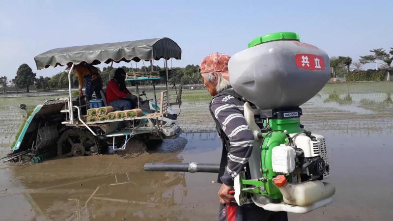 <br> ▲將火山灰及蚯蚓糞肥用在水稻田施肥在台灣創舉。(圖/記者陳雅芳攝,2020.02.29)