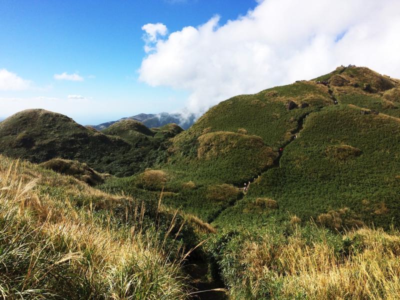 萬名網友票選三大必訪台北最美步道