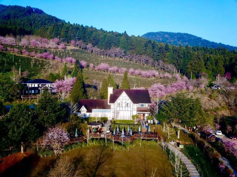 宮崎駿卡通翻版夢幻「粉紅小鎮」就在臺灣深山裡!
