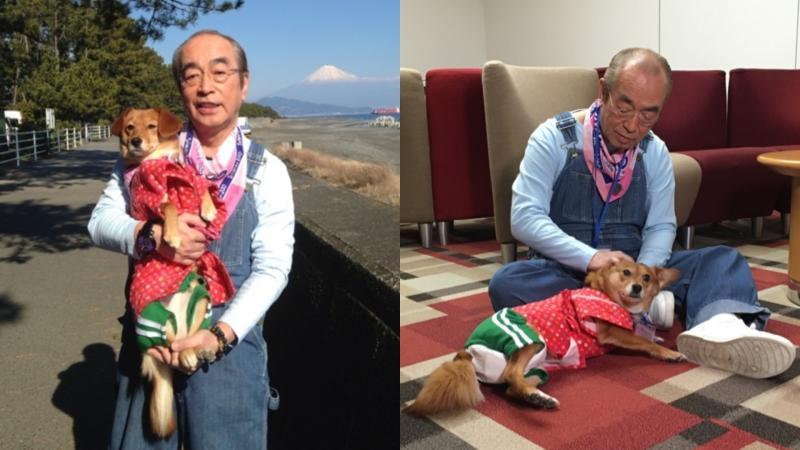 ▲志村健終身未婚,他在家中養了4隻小狗相伴。(圖/志村健官方部落格)