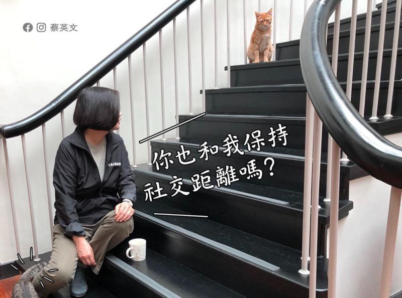 蔡英文總統與愛貓宣導「社交距離」。(圖 / 取自蔡英文臉書)
