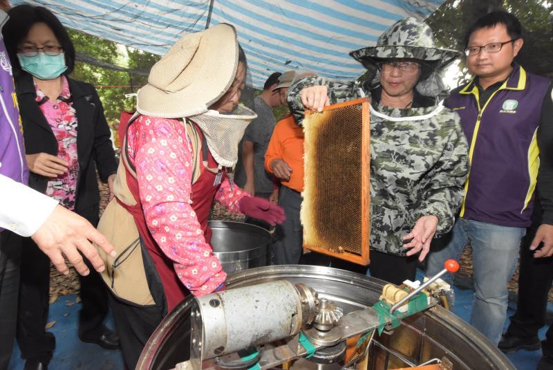 ▲王惠美說,政府大力推廣「林下經濟」,養蜂就是其中一種,養蜂不僅能讓果樹授粉,也是生態中最好的指標。(圖/記者陳雅芳攝)