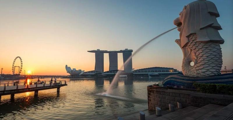 新加坡疫情怎又爆衝?外媒找到原因 眾一看:台灣尷尬了
