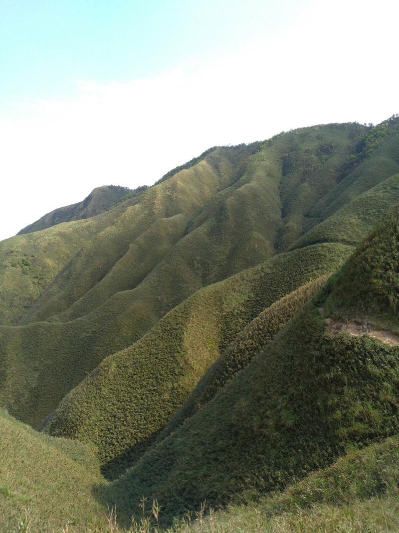 聖母登山步道上方的「抹茶山」