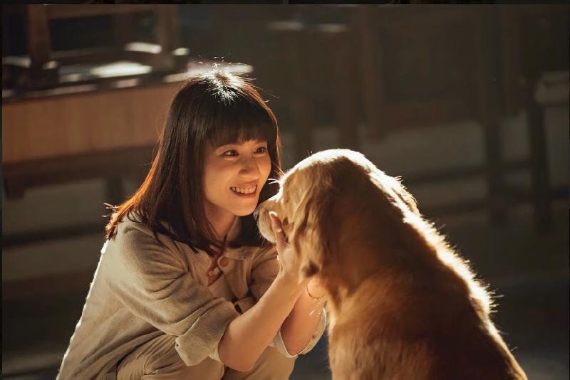 <br> ▲連俞涵與寵物演員有許多對手戲。(圖 / LINE TV提供)