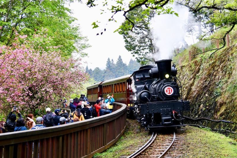 徵選林鐵花季主題列車<b>影像</b> 收錄珍藏