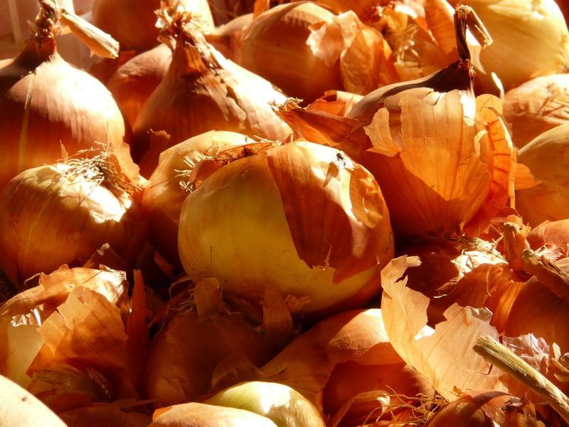 ▲原PO其實並沒有討厭洋蔥,但令他不能接受的是,在這格炒洋蔥配菜中,完全沒有「蛋、豆干」等類型的混搭物。(示意圖/取自pixabay)