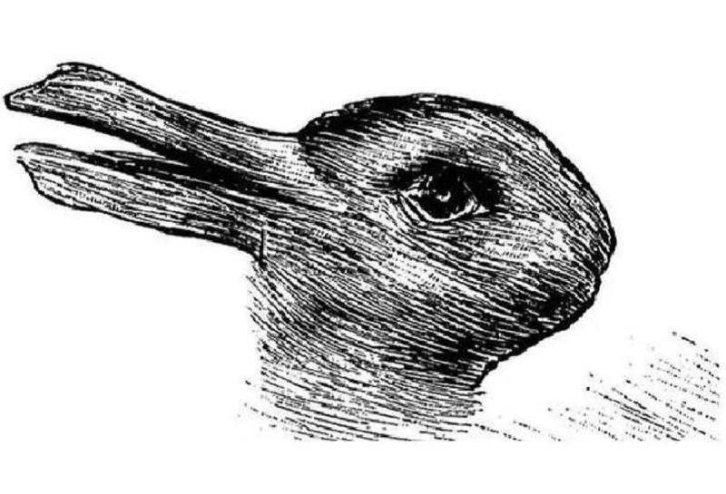 ▲第一眼看到哪種動物?秒解你的「真實性格」。(圖/翻攝自Look Pretty)