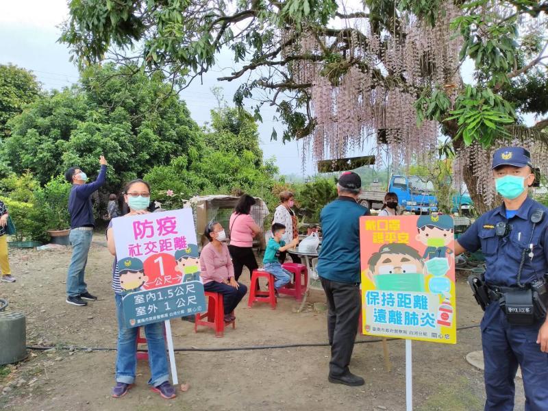 白河區汴頭里的石斛蘭瀑布奇景,近日花況大爆發,吸引不少遊客前往賞花