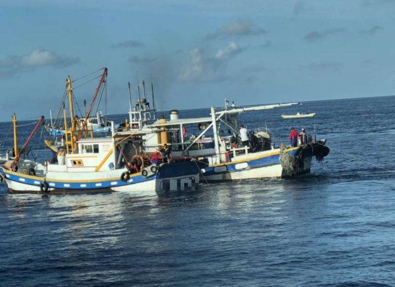 ▲海巡署南部分署高雄海巡隊查獲2艘漁船在商港區違規拖網捕魚。(圖/記者黃守作攝,2020.05.04)