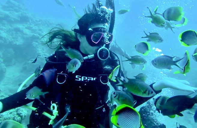 ▲李惠娟運用「彈性工作八小時」,安排時間考取潛水證照,投入美麗海洋的懷抱。(圖/資料照片)