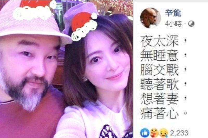 ▲辛龍發文訴說想念劉真的心情。(圖/取自辛龍臉書)