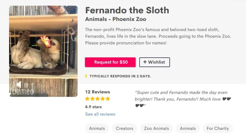 ▲鳳凰城動物園替園區內的樹懶開直播、拍攝專屬影片,以籌措疫情應急資金。(圖/翻攝自