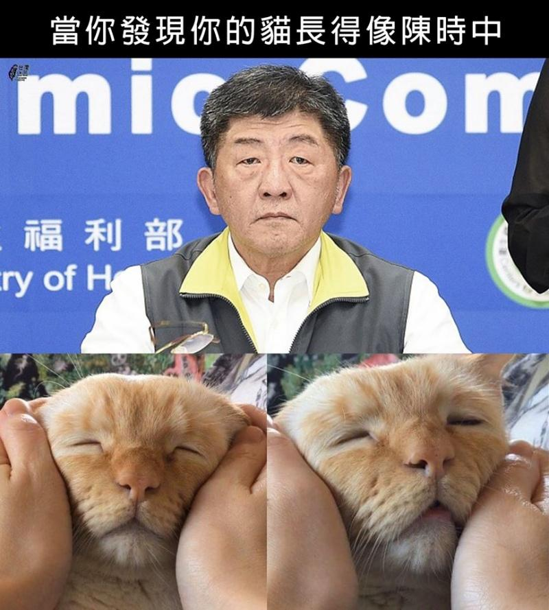▲Teto的表情和阿中部長神似。(圖/翻攝自台灣迷因