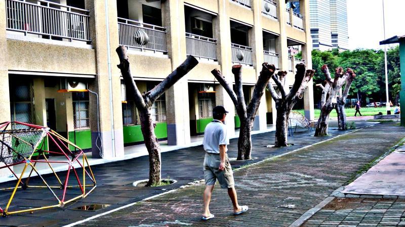 ▲全台各縣市樹木不少齊遭「斷頭」。(圖/取自高雄愛樹人臉書)
