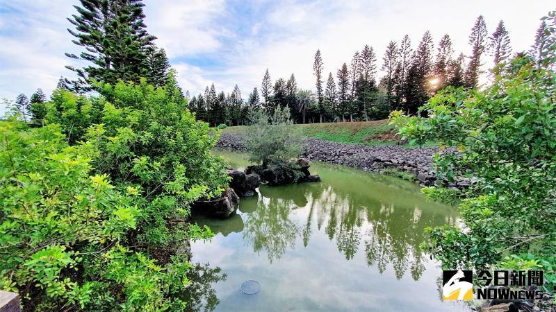 ▲林務所計畫興建比天人湖多4倍的水池,最深達4米,也將進行防漏工程讓水源蓄存更有效率。(圖/記者張塵攝,2020.05.17)