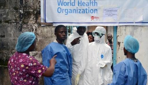 ▲世界衛生組織應對伊波拉(