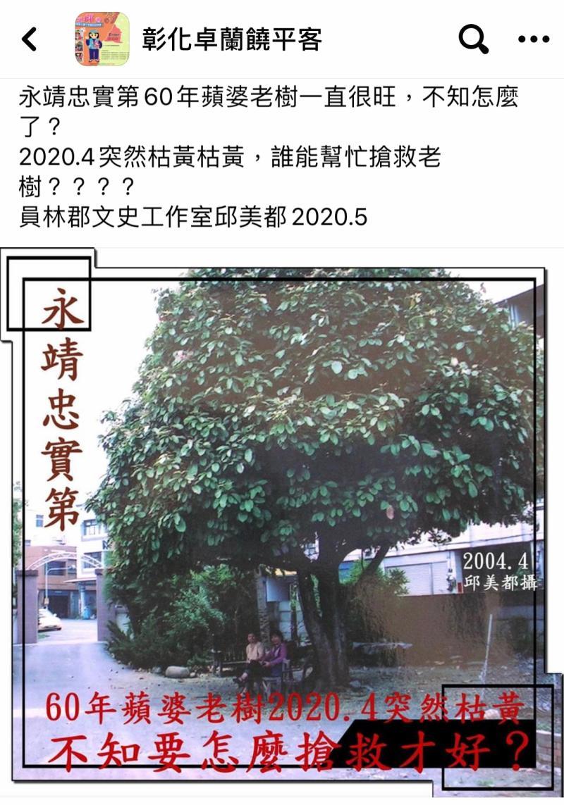 ▲員林郡文史工作室邱美都為老樹請命,在臉書社團發文,請求大家搶救老樹。(圖/記者陳雅芳翻攝,2020.05.18)